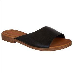 New Eberta jellypop sandal